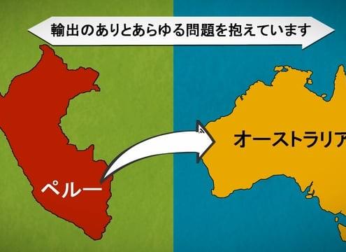 Japanese explainer video